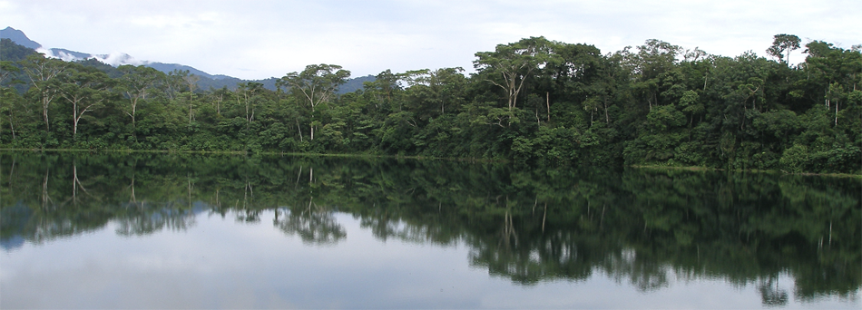 Lake Ayauchi, Ecuador. Photo: Bryan Valencia